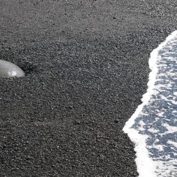Fotografie: Island ©Gabriele Stautner, ARTIFOX