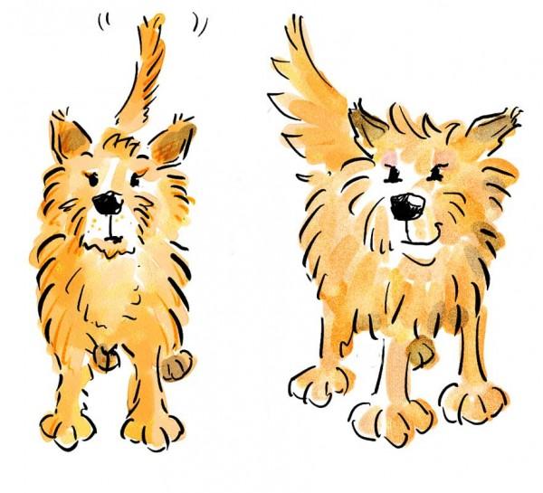 Kinderbuch Illustration: Cleo, children's book illustration, © Gabriele Stautner, ARTIFOX